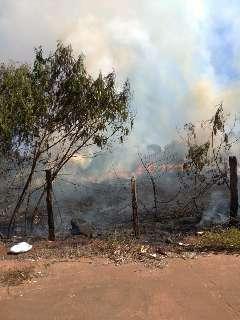 A caminho do trabalho, leitor registra fogo alto na margem do Corrego Balsamo