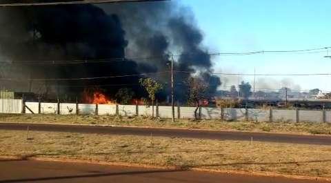 Fogo na região de Indubrasil destrói carros que iriam a leilão