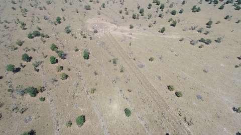 Fazendeiro é multado em R$ 112 mil por desmatar 112 hectares de mata nativa