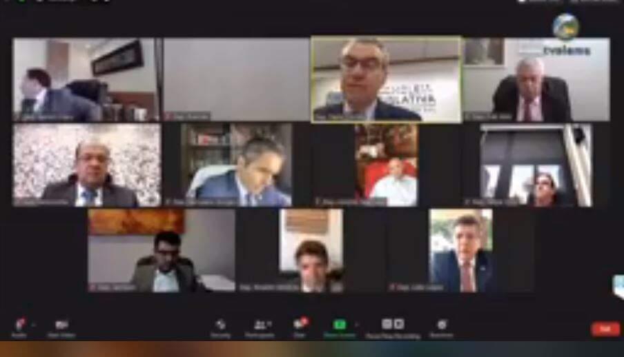 Deputados durante sessão virtual na Assembleia (Foto: Reprodução - Facebook)