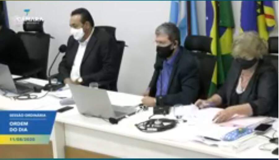 Vereadores durante votação da sessão virtual (Foto: Reprodução - Facebook)