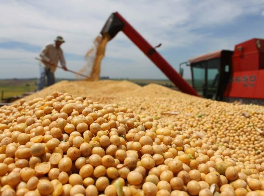 Colheita de soja; safra no Estado este ano se aproxima das 11 milhões de toneladas (Foto: Reprodução/Semagro)