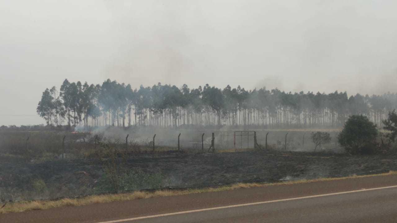 Área de vegetação e pastagem queimada. (Foto: Ademir Almeida)