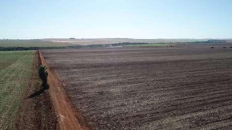 Incêndio em 186 hectares faz usina ser multada em R$ 186 mil pela PMA