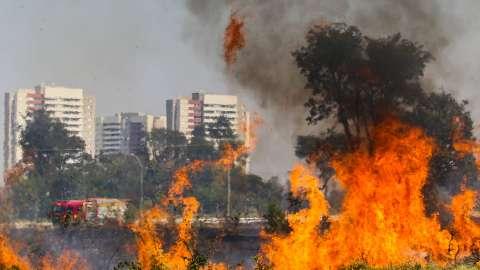 Incêndio consumiu dois hectares de terreno ao lado do Parque do Sóter