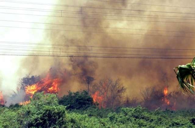 União libera R$ 562,8 mil para combate a incêndios no Pantanal