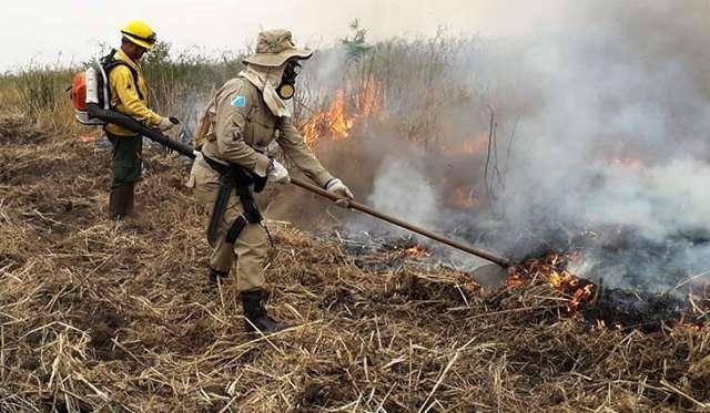 Cenário é de falta de chuva e aumento de focos no Pantanal em setembro