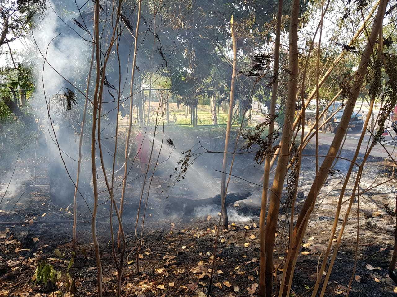 Área consumida pelo fogo, na tarde desta terça-feira, no Caranda Bosque (Foto: Direto das Ruas)