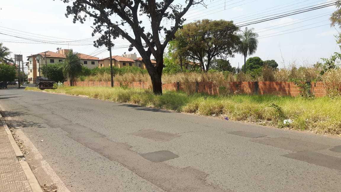 Rua Silvio Romero Jardim São Lourenço, terreno baldio abandonado. (Foto:Direto das Ruas )