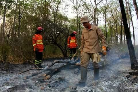 Bombeiros retomam combate ao fogo na Nhecolândia com reforço de militares do PR