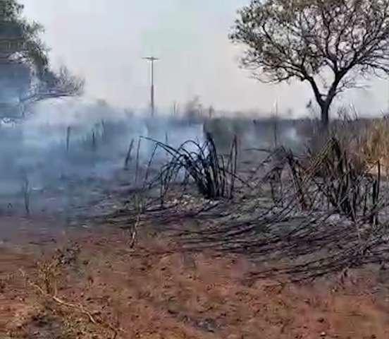 Recomeçando, produtora de hortifruti orgânico pede ajuda após incêndio em rancho