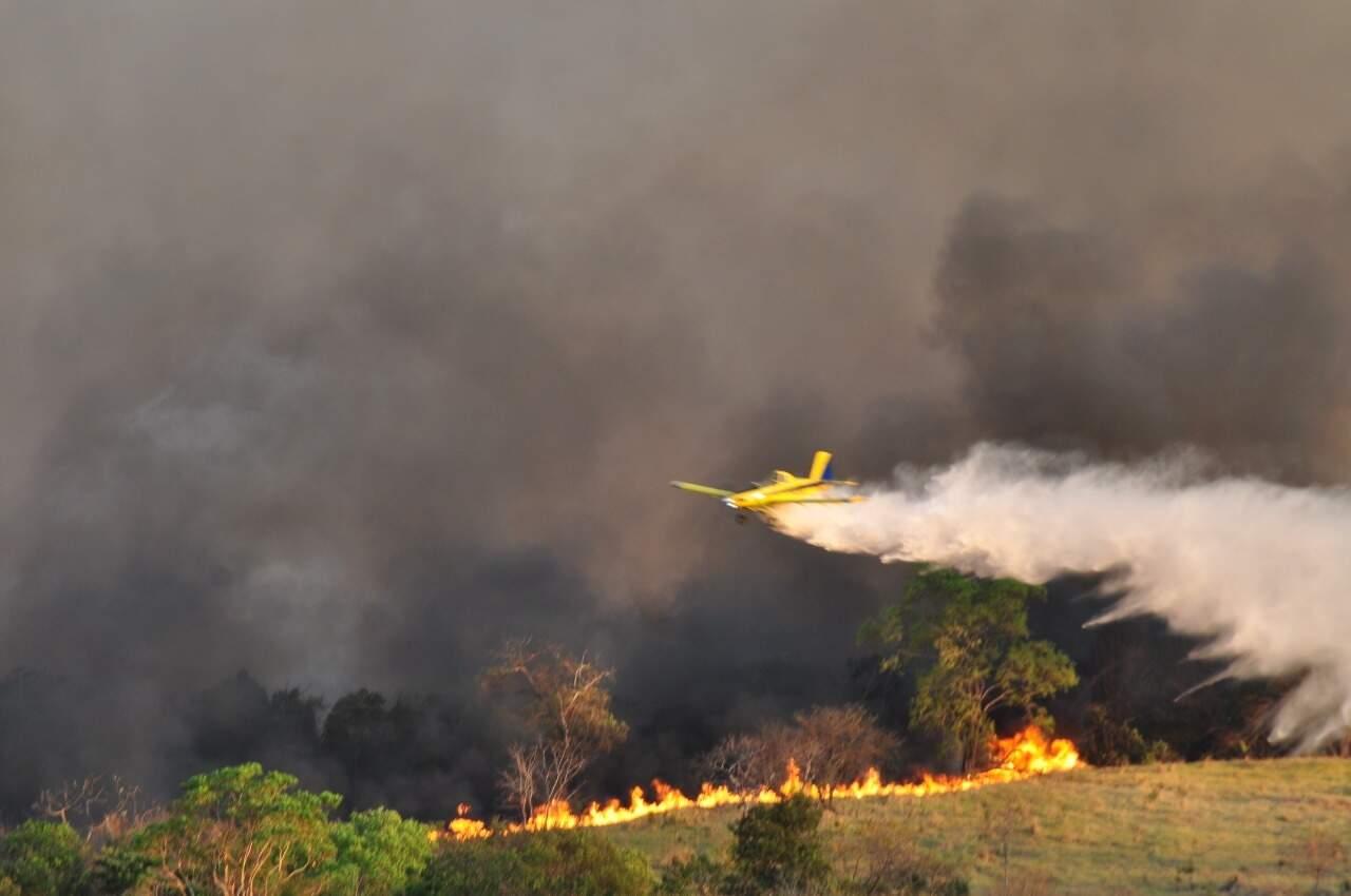 Chamas que atingiram área de preservação no Alto Taquari foram controladas (Foto: Divulgação/Imasul)