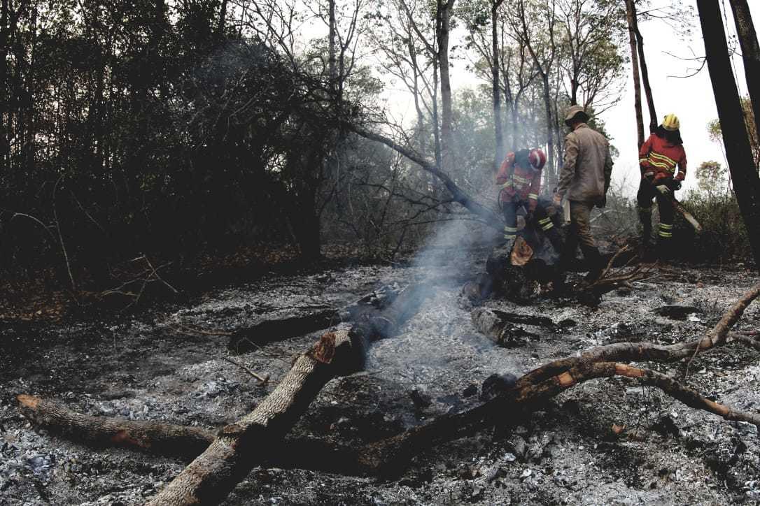 Militares em meio a vegetação completamente destruída pelo fogo. (Foto: Chico Ribeiro)