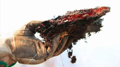 Com chuva se aproximando, raios e vegetação seca ampliam risco de fogo