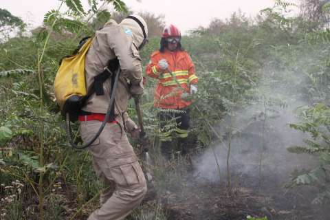 Força-tarefa reduz focos de incêndios, mas equipes continuam em alerta