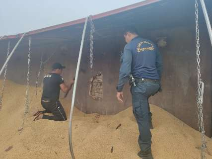 Traficante foge após tombar carreta com 600 quilos de maconha na MS-377