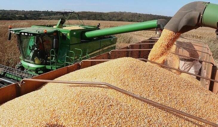 Milho é um dos grãos que fazem parte da base econômica estadual e indústria agrega valor ao produto local (Foto: Edemir Rodrigues/Ascom)