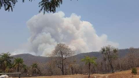 Com 16,4 mil focos, controle do fogo no Pantanal se torna humanamente impossível