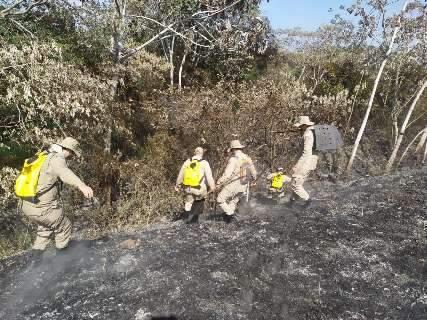 """Com """"fogo contra fogo"""" força-tarefa controla incêndio em """"ilha"""" do Pantanal"""