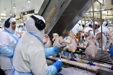 Com medo de surto, funcionários de frigorífico denunciam novos casos de covid