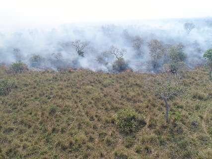 Combate ao fogo no Pantanal terá reforço de mais três aviões