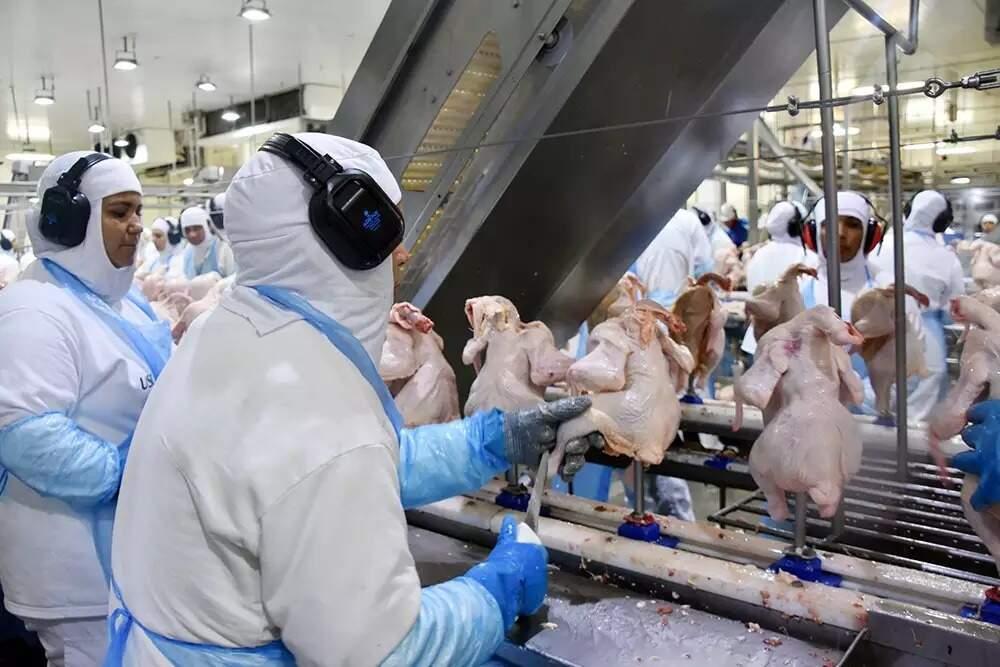 Frigoríficos são motivo de preocupação com casos de coronavírus. (Foto: Divulgação/Fiems)
