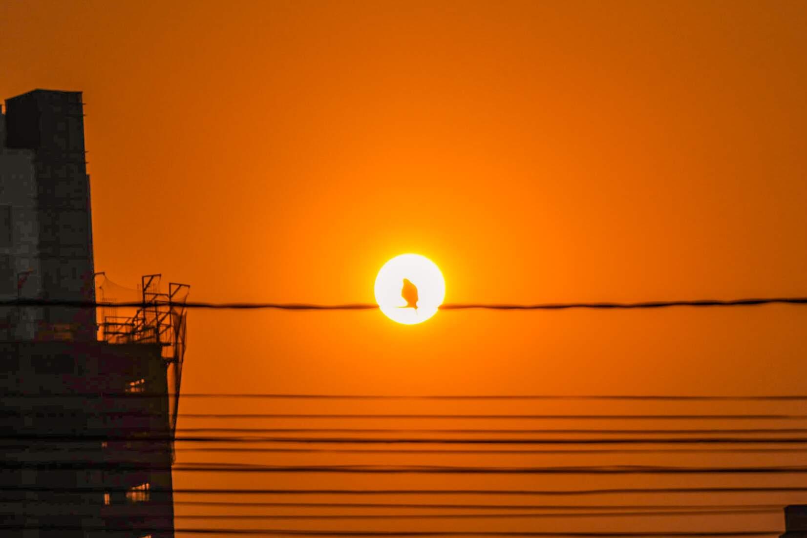 Um sol para cada um: Campo Grande teve ontem calor de 38,8ºC. (Foto: Henrique Kawaminami)