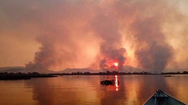 Sofrendo com as queimadas, Pantanal anda precisando de muita ajuda (Foto: Reinaldo Nogales/Ecoa)