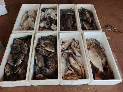 PMA multa em R$ 15,7 mil três paranaenses por pesca ilegal