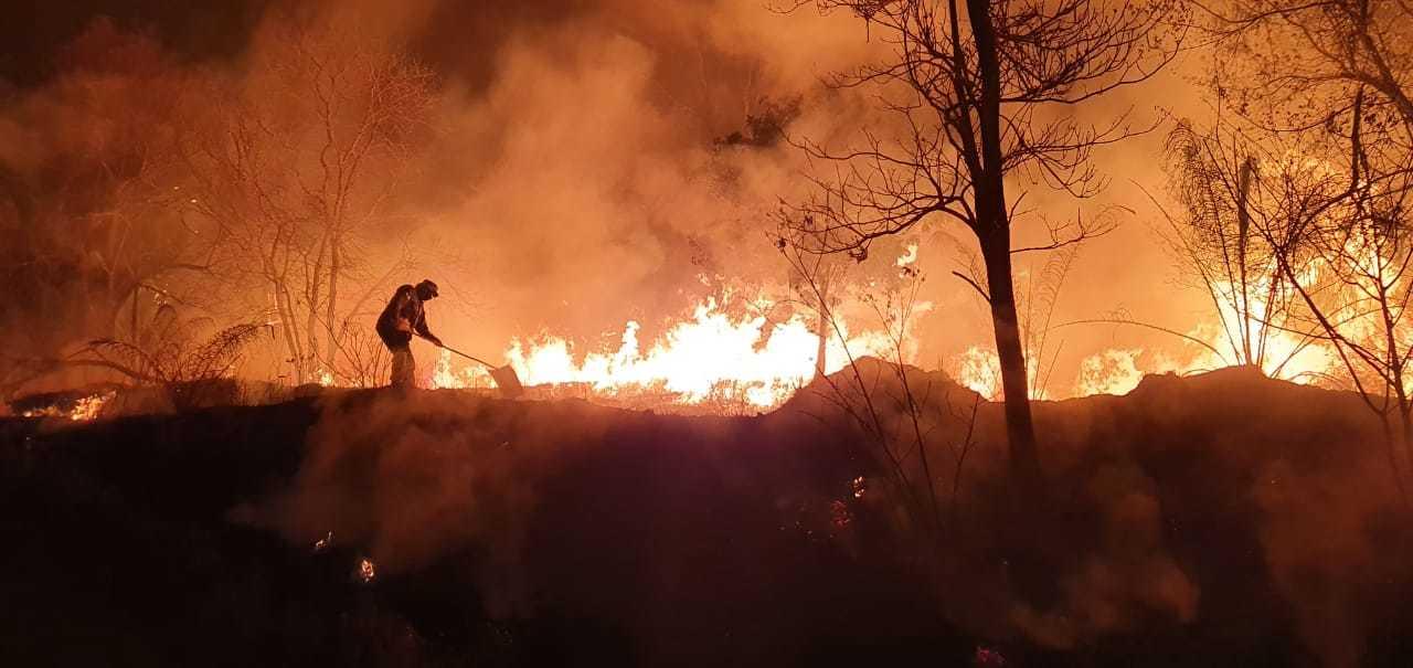 Um dia antes de chuva na semana passada, o bioma mantinha 342 focos de incêndio ativos. (Foto: Corpo de Bombeiros/Arquivo)