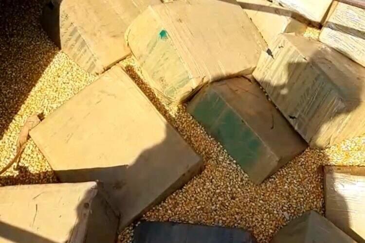Fardos de droga encontrados em meio aos grãos de milho. (Foto: Ponta Porã News)