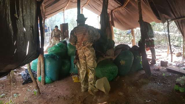 Paraguai faz ações simultâneas contra produção de maconha na fronteira