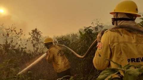 Desmobilização de brigadistas não afeta combate às queimadas em MS, diz Ibama