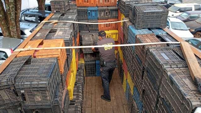 Polícia encontra 2,8 mil quilos de maconha em caminhão com caixas vazias