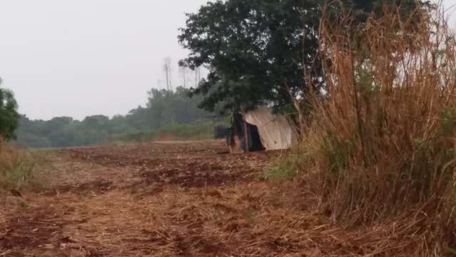 Famílias se armam contra invasões de áreas de preservação na Itamarati