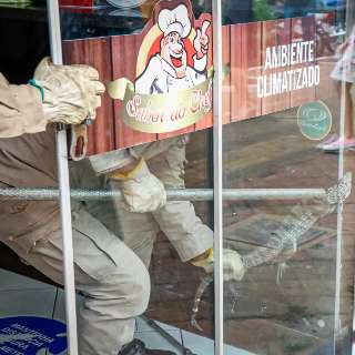 """Teiú """"invade"""" restaurante no Centro e dá trabalho a bombeiros no resgate"""