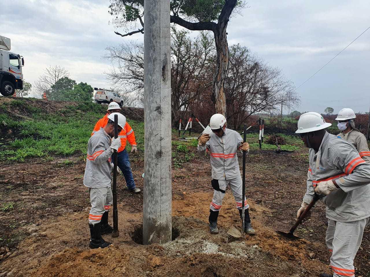 Equipes trabalhando para instalar estrutura que dá suporte para ninho (Foto: Divulgação/Energisa)