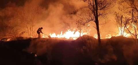 Movimento reúne assinaturas e doações para prevenir novos incêndios no Pantanal