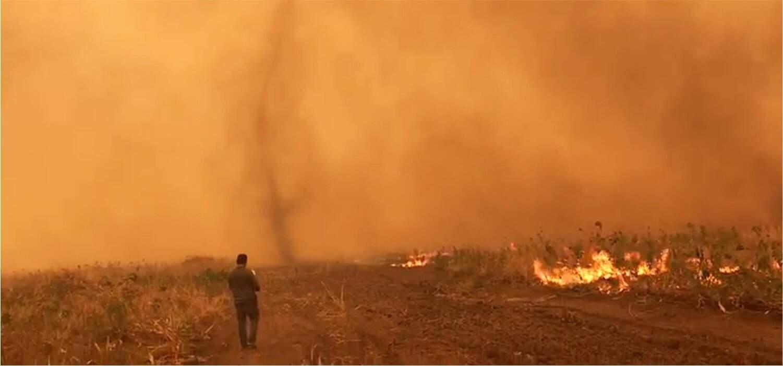 Área atingida por queimadas no Pantanal. (Foto: Fernando Tortato)