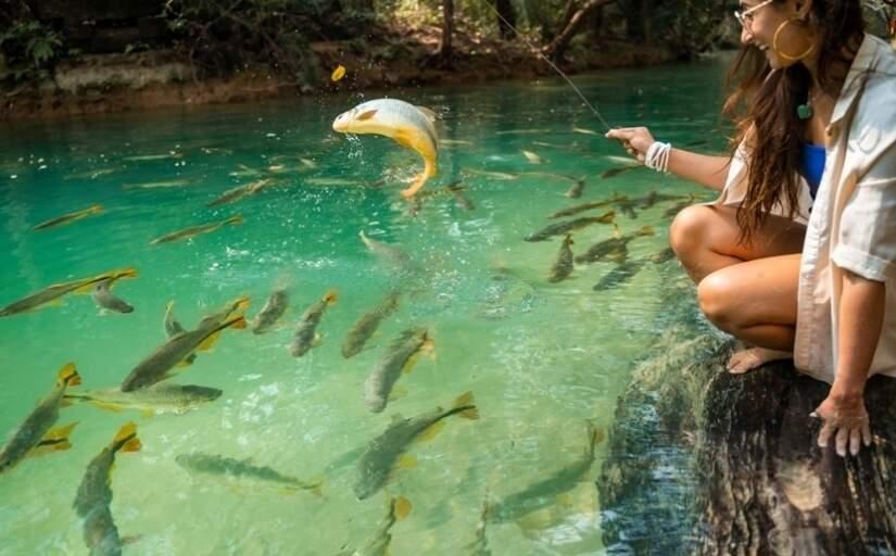 Aquário natural em Bonito: a onda do momento é redescobrir o Brasil, o que fortalece o turismo doméstico, mas alta de preços pode afugentar os turistas (Foto: BonitoAway/Divulgação)