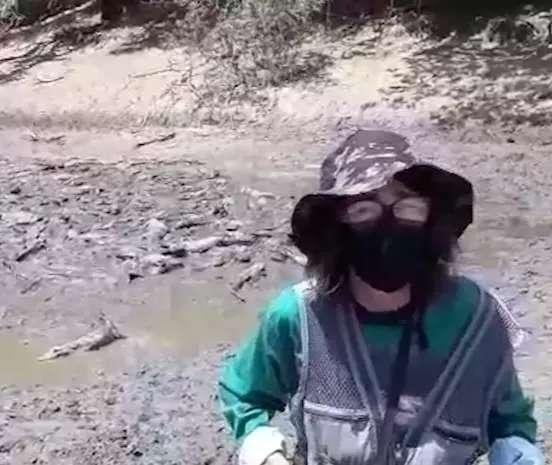 """Se não chover, há risco de morte para 40% do """"mar de jacarés"""", diz pesquisadora"""