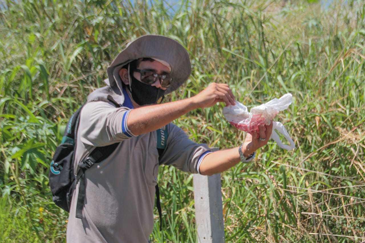 Agente de saúde recolhe lixo em terreno no Estrela do Sul (Foto: Marcos Maluf)