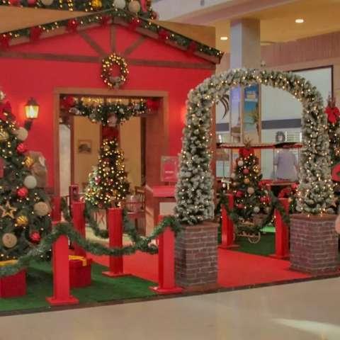 Pandemia não deve atrapalhar decoração de Natal, dizem leitores