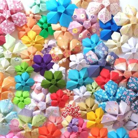 Paixão por flores fez Dani aprender a dobrar papel e relembrar os avós