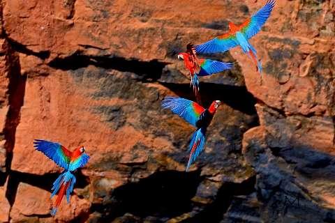 Buraco das Araras, uma boa dica de passeio em família neste verão
