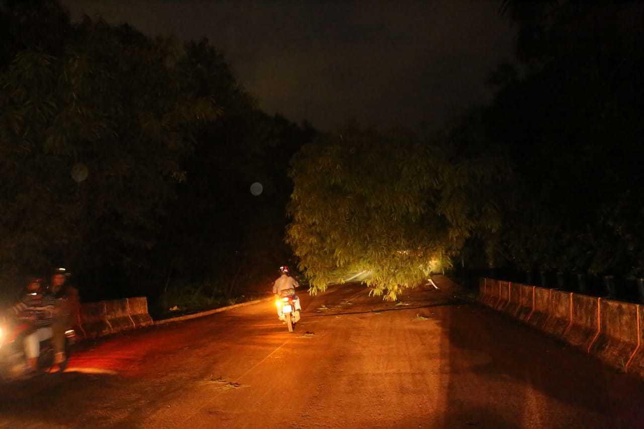 Motociclista desviando de árvore que está ameaçando cair na Rua Lógica. (Foto: Paulo Francis)