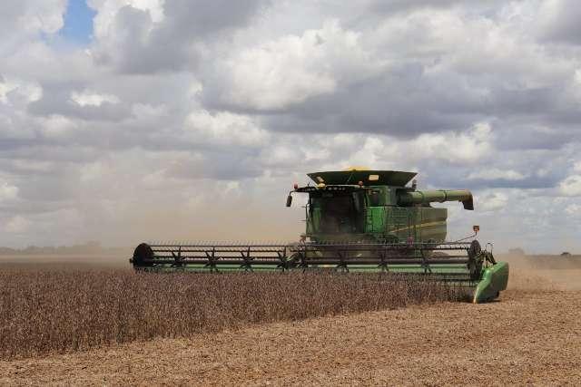 Valor da produção agropecuária bate recorde e vai a R$ 70,9 bilhões em MS