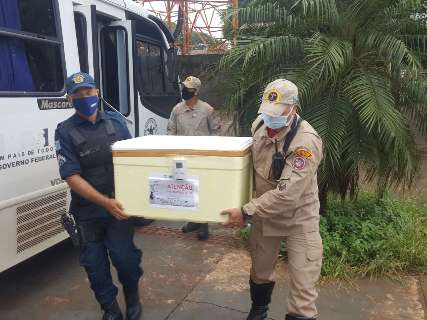 Dourados recebe 29 mil doses de CoronaVac e inicia vacinação nesta terça