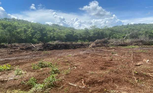 Fazendeiro é multado em R$ 94 mil por desmatamento ilegal