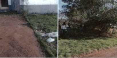 Local onde corpo da idosa assassinada foi deixado, debaixo de um pé de goiaba com lixo por cima. (Foto: Reprodução de processo)